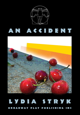 An Accident Bookcover